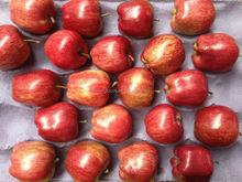 18kg Huaniu apple 138/150/163/175