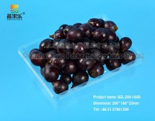 new design clear PET grape fruit tray SGL-200-160D
