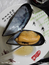 FROZEN BOILED HALF SHELL MUSSEL 10045