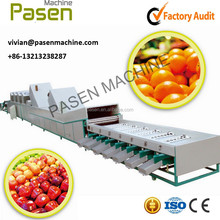 Fruit and Vegetable Classifying Machine with Brunshes to cleaning Fruits and Vegetables (SMS: +86-13213238287)