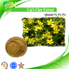 2015 New Root of Catclaw Buttercup, Catclaw Buttercup Root Tuber extract, Cat's Claw Extract