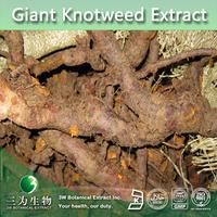 giant knotweed extract 50%, 98%, 99% Resveratrol,Acetyl-resveratrol Factory,Acetyl-resveratrol 98%
