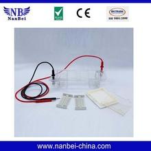 Best seller gel electrophoresis virtual lab