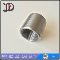 New Product Stainless Steel Female Thread Hydraulic Hose Fittings Ferrule