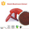 High quality 100% pure reishi mushroom extract triterpenes