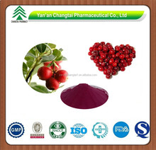 Pure Natural High Quality Bilberry Extract Anthocyanidin 5%-40%