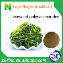 High quality natural seaweed polysaccharides Extract/seaweed extract