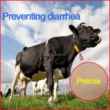 Calves Preventing Diarrhea