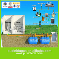 PUXIN septic tank biogas digester for electricity generating