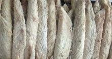 pure frozen mackerel fillet with no red meat hot sale
