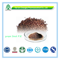 Hot Sale GMP Factory Supply Organic Grape Seed Extract powder