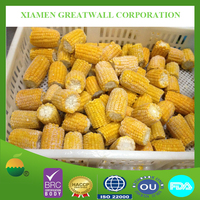 IQF frozen corn on cobs to Suriname