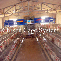 Better Factory hot sell 3 tier 120 birds commercial chicken house(factory price)
