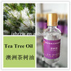 Extract herbal 30ml(1oz) tea tree oil for acne Industrial Flavor Usage