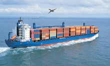 ocean freight rates shipping forwarder universal logistics services