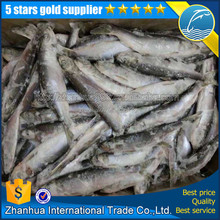 Frozen seafood manufacter of canadian/japanese herring pacific mackerel