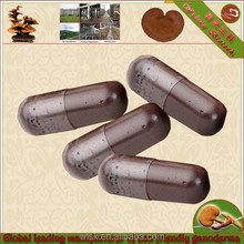 beauty product lingzhi extract powder capsule