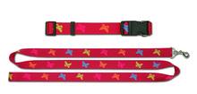 Custom Pet Leash & Collar for Dog /pet collar leash/nylon pet collar & leashes