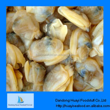 frozen best quality live seafood clams