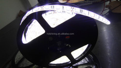 superior materials 5050 LED Strip made in china