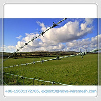 High quality best price barbed wire fence/high tensile steel barbed wire (Professional manufacturer,good quality)