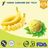 Food Grade Banana Powder Feed / Banana Powder for Health Care Product