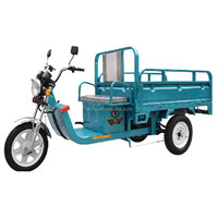 Three Wheel Cargo Tricycle Food Cart Tricycle