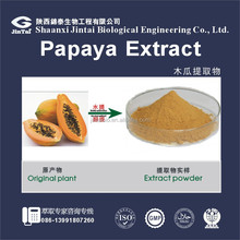 china manufacturer water-soluble instant papaya seed powder