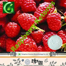 Free samples of Raspberry Ketone,Health Food Raspberry Ketone Powder