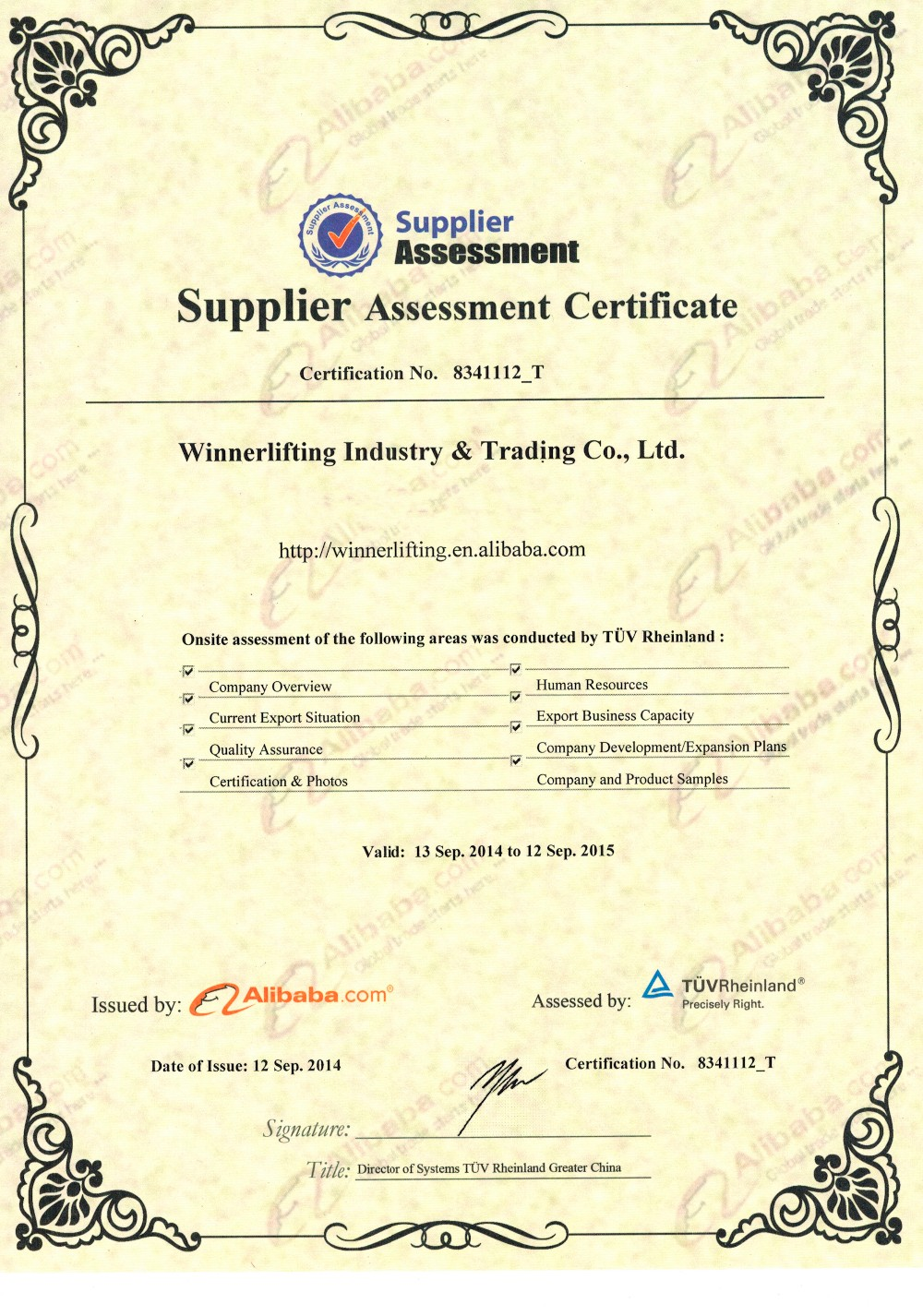 Assessment Certificate from Alibaba.jpg