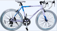 700c alloy frame road sport bike 21 speed calliper brake SWRB018