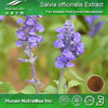 Sage Extract, Salvia officinalis Extract, Salvia Extract