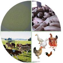 China Raw Material Feed Additive Sodium Butyrate 30%, Organic Acid Granule