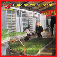 new Bean sprout growing machine