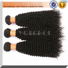 South Africa Hair Styles Virgin Brazilian Afro Kinky Curly Hair