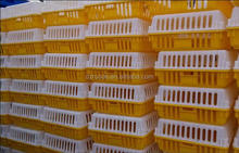 2015 best selling Plastic live chicken transport cage, poultry transport crate, Cages for chicken