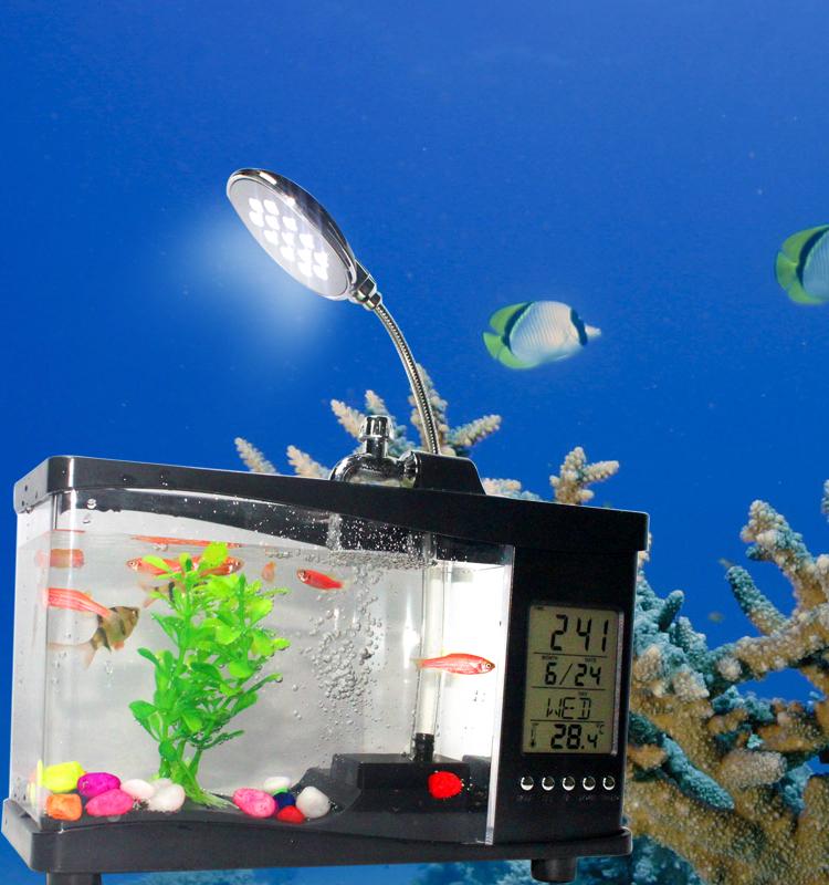 Christmas Lights Shark Tank: Small Square Fish Tank