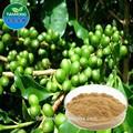 2015 china fabricante de café verde orgánico extracto de frijol cápsula