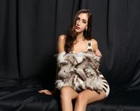 YR175 Best quality Blue Fox fur pillow cover