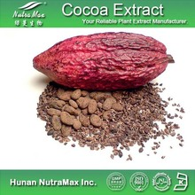 Natural Cocoa Seed Extract/Cocoa Seed Extract Powder