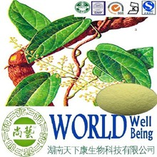 Hot sales plant extract Fibraurea recisa pierre extract/Palmatine 98%/Increase myocardial contraction force Free sample
