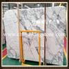 Chinese popular italy import arabescato white marble Wholesaler Price