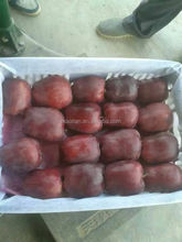 Huaniu Apples Red Delicous of year 2015