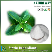 Pure Natural Stevia extract powder, Stevia rebaudiana extract-80%, 90%, 95% stevioside