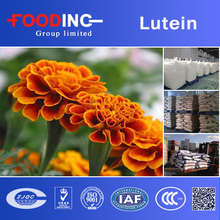 GMP Manufacture Marigold Flower Extract 20% Lutein