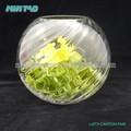 Claro florero cristal barato