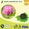 100% natural Red Clover Extract /Red Clover Extract powder Isoflavone