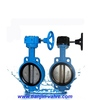 flange butterfly valve with expansion joint