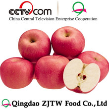 Apple fruit sweet apple / China fruit