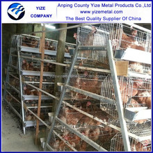 large animal cages for sale/chickens cage for sale in philippines (manufacturer)